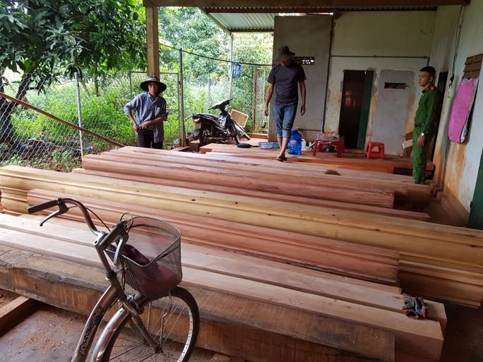 Điều công an khác địa bàn bắt gỗ lậu: Đột kích 5 điểm, thu thêm 230 m3 gỗ - Ảnh 5.