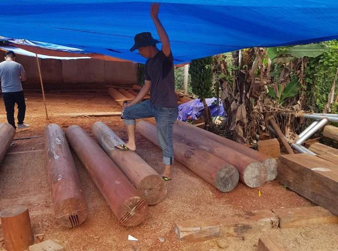 Điều công an khác địa bàn bắt gỗ lậu: Đột kích 5 điểm, thu thêm 230 m3 gỗ - Ảnh 7.