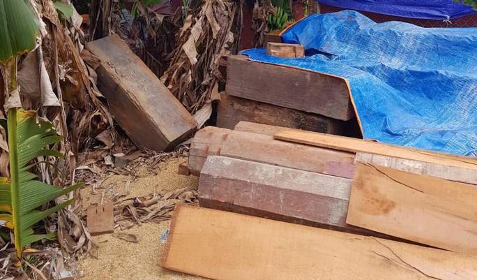 Điều công an khác địa bàn bắt gỗ lậu: Đột kích 5 điểm, thu thêm 230 m3 gỗ - Ảnh 9.