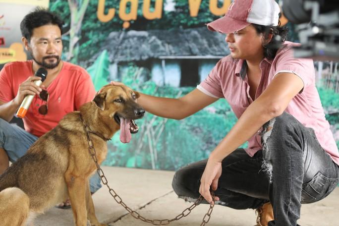 """Nhà sản xuất phản hồi tranh cãi chọn chó Nhật vào phim """"Cậu Vàng"""" - Ảnh 3."""