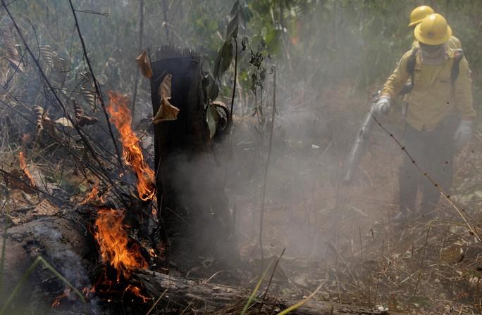 Brazil nói không với tiền viện trợ cứu rừng Amazon của G7 - Ảnh 1.