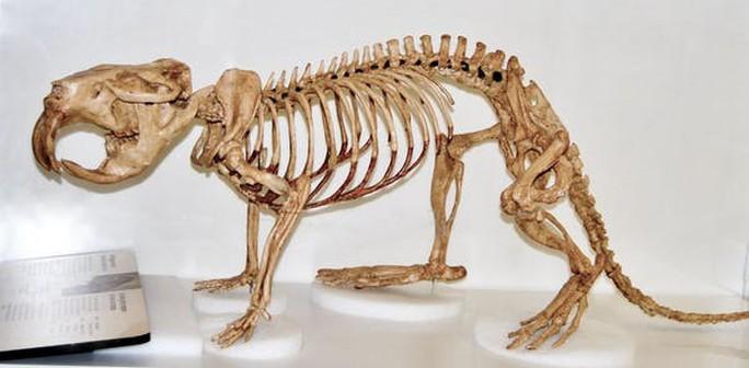 Phiên bản quái thú cổ xưa của 4 sinh vật hiện đại hiền lành - Ảnh 3.