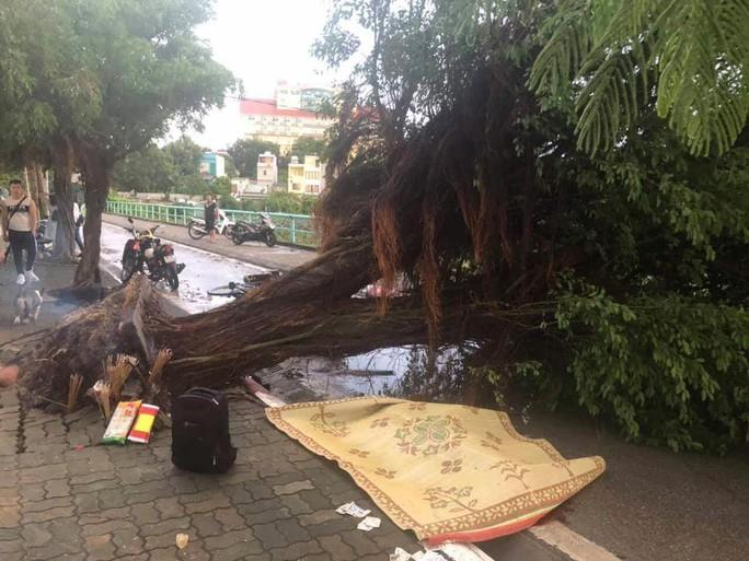 Ảnh hưởng bão số 4, Hà Nội mưa lớn làm đổ hàng loạt cây, 1 người chết - Ảnh 1.