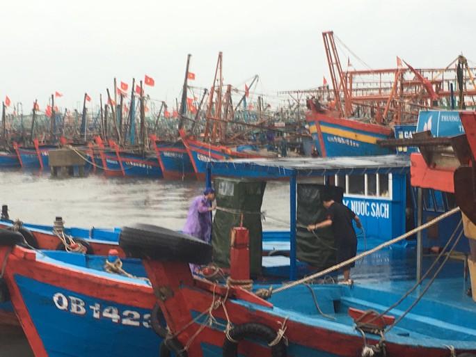 Hơn 150 tàu cá Quảng Bình nằm trong vùng nguy hiểm bão số 4 - Ảnh 1.