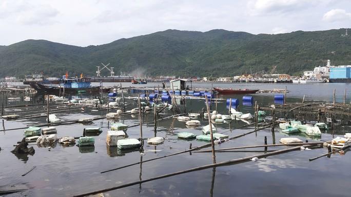 Phá nát vịnh Mân Quang - Ảnh 1.