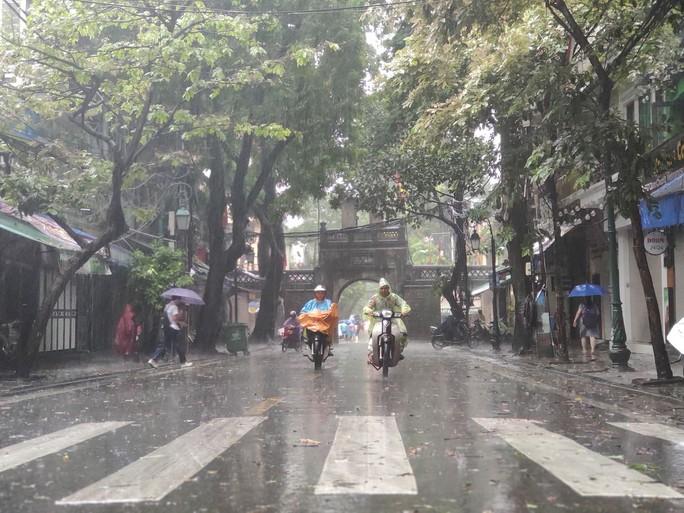 Hà Nội: Mưa rất to, cây cối đổ la liệt  do ảnh hưởng bão số 3 - Ảnh 2.