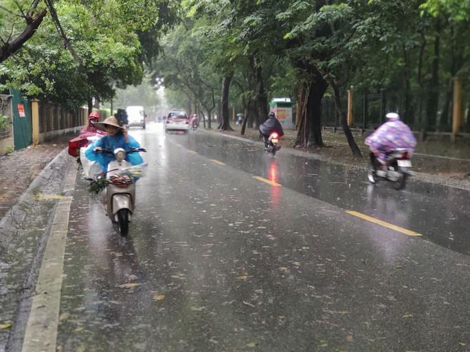 Hà Nội: Mưa rất to, cây cối đổ la liệt  do ảnh hưởng bão số 3 - Ảnh 4.