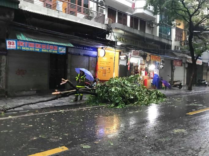 Hà Nội: Mưa rất to, cây cối đổ la liệt  do ảnh hưởng bão số 3 - Ảnh 6.