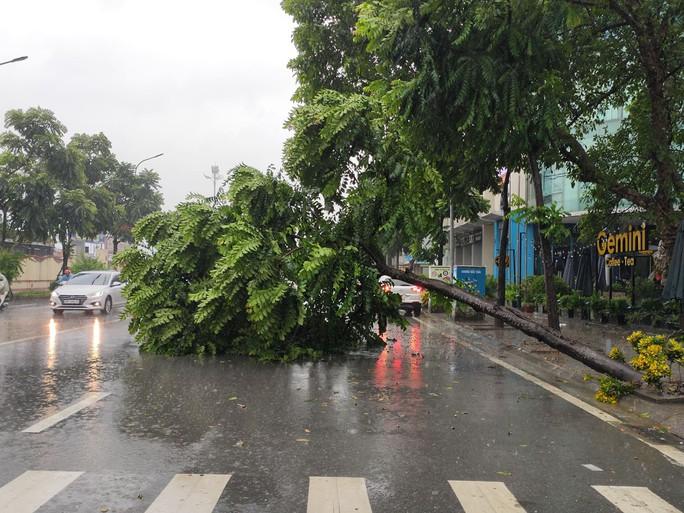 Hà Nội: Mưa rất to, cây cối đổ la liệt  do ảnh hưởng bão số 3 - Ảnh 7.