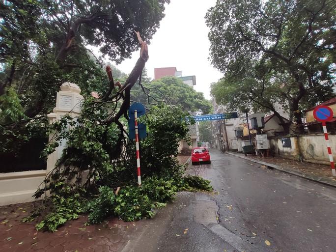 Hà Nội: Mưa rất to, cây cối đổ la liệt  do ảnh hưởng bão số 3 - Ảnh 1.