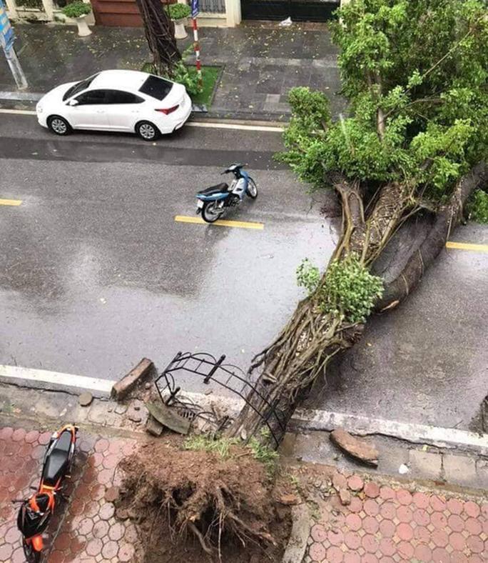 Hà Nội: Mưa rất to, cây cối đổ la liệt  do ảnh hưởng bão số 3 - Ảnh 3.