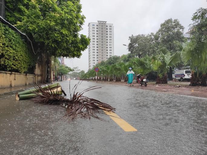 Hà Nội: Mưa rất to, cây cối đổ la liệt  do ảnh hưởng bão số 3 - Ảnh 9.