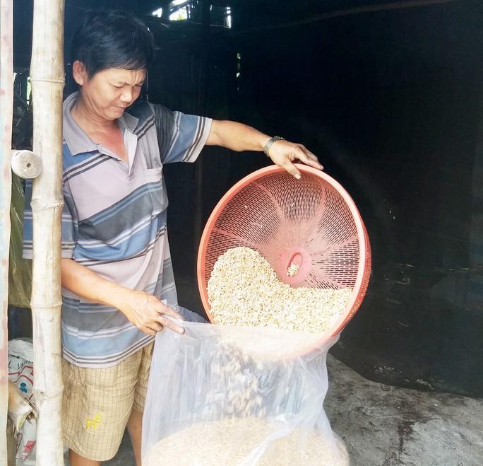 Bí quyết làm nên những hạt cốm thơm, giòn ở Cà Mau - Ảnh 8.