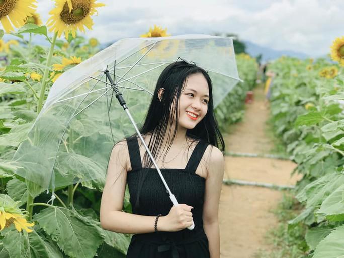 Phát sốt với vườn hoa hướng dương mới xuất hiện ở Quảng Nam - Ảnh 11.