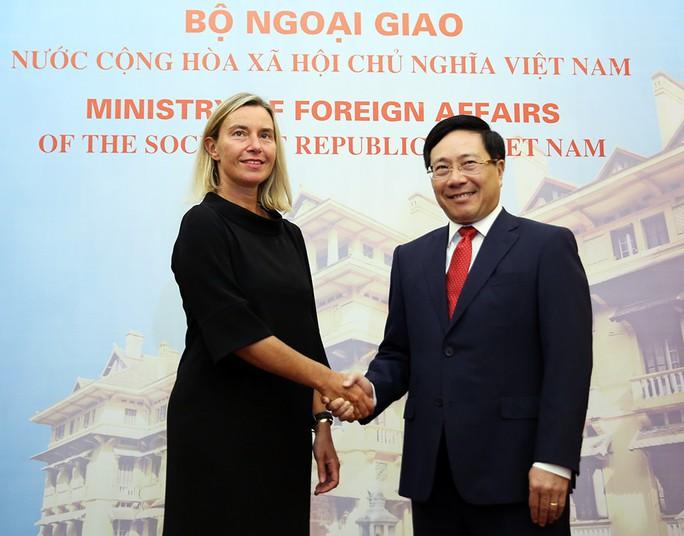 Đề nghị EU tiếp tục đóng góp vào duy trì hòa bình, ổn định ở Biển Đông - Ảnh 1.