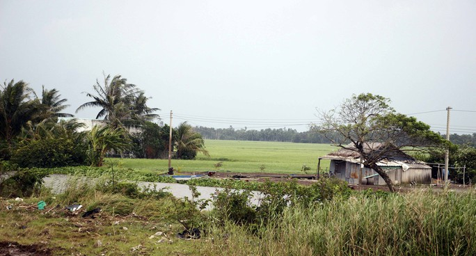Miền biển Tây Cà Mau tan hoang sau mưa bão - Ảnh 3.