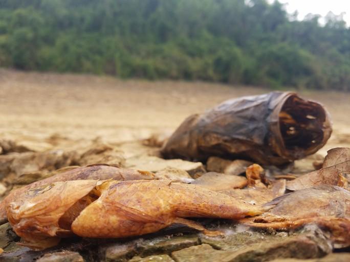 Thừa Thiên -Huế,  Quảng Trị: Cận cảnh sông, hồ trơ đáy vì nắng hạn khốc liệt - Ảnh 10.