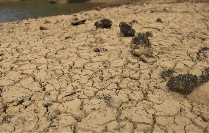 Thừa Thiên -Huế,  Quảng Trị: Cận cảnh sông, hồ trơ đáy vì nắng hạn khốc liệt - Ảnh 3.