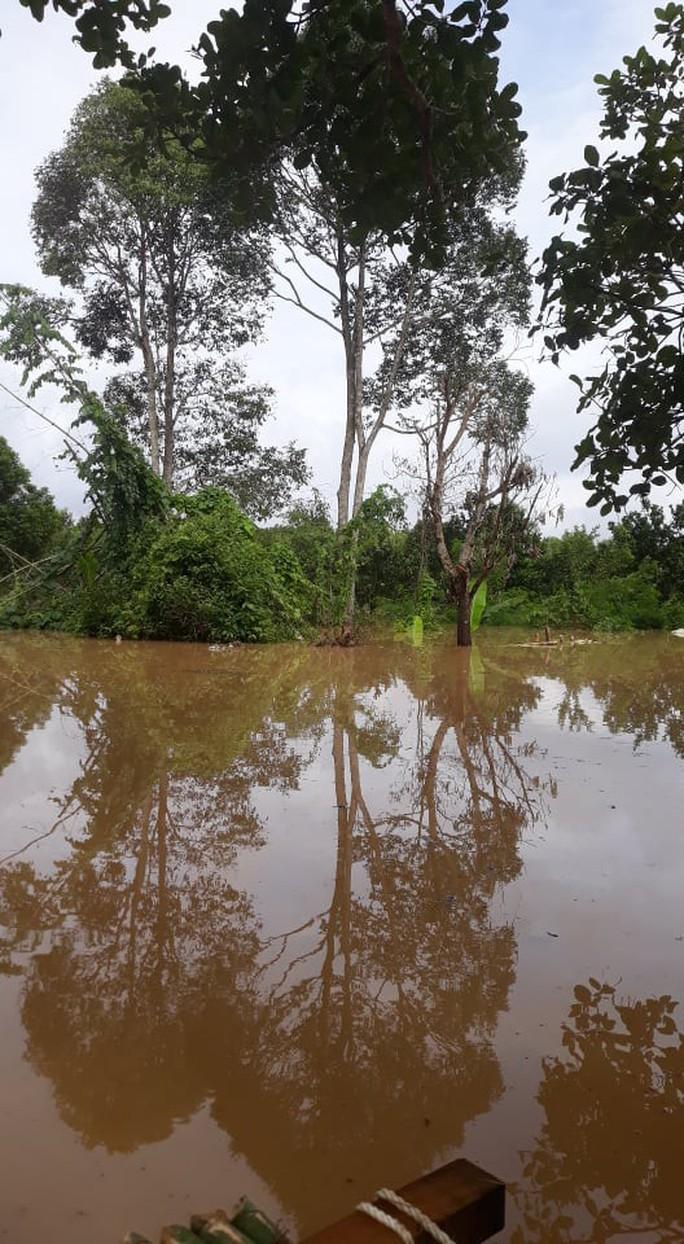Một vùng rộng lớn ở Đồng Nai đang chìm trong nước, có nơi lút đầu trẻ  - Ảnh 2.