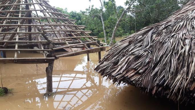 Một vùng rộng lớn ở Đồng Nai đang chìm trong nước, có nơi lút đầu trẻ  - Ảnh 4.