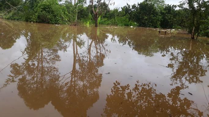 Một vùng rộng lớn ở Đồng Nai đang chìm trong nước, có nơi lút đầu trẻ  - Ảnh 3.