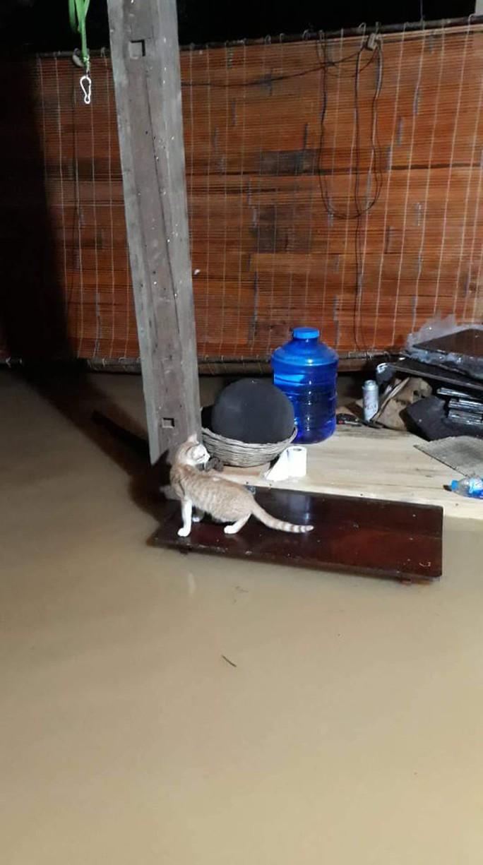 Một vùng rộng lớn ở Đồng Nai đang chìm trong nước, có nơi lút đầu trẻ  - Ảnh 8.