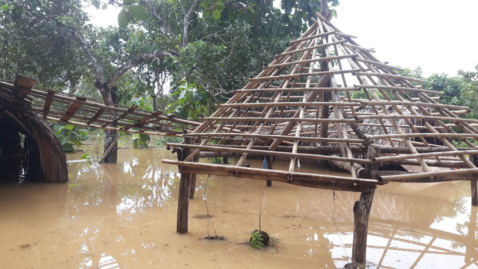 Một vùng rộng lớn ở Đồng Nai đang chìm trong nước, có nơi lút đầu trẻ  - Ảnh 5.