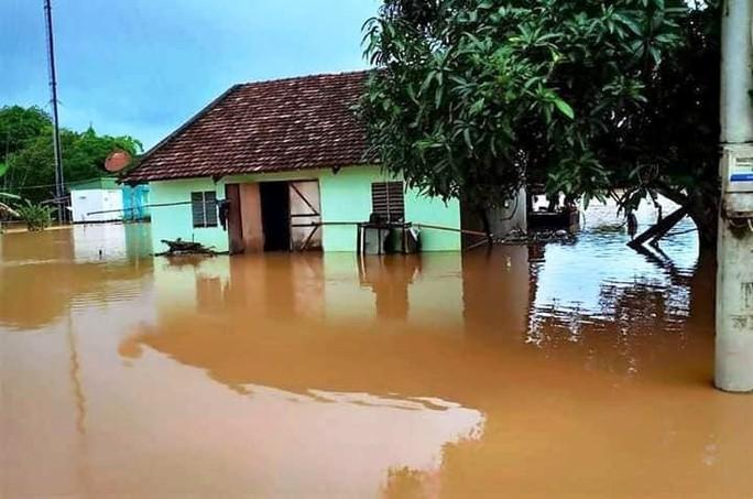 Nước sông Đồng Nai dâng cao, 1 người tử vong do rơi cống thoát nước - Ảnh 5.