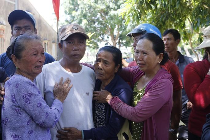 Ly kỳ chuyện cá heo chỉ đường cứu 41 ngư dân Quảng Nam thoát chết - Ảnh 1.