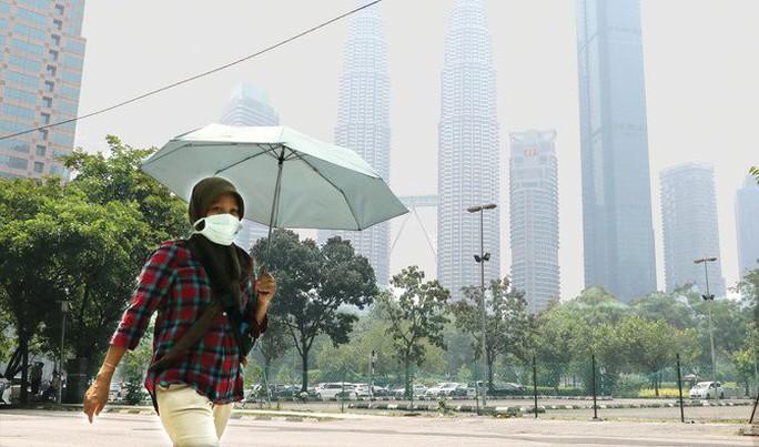 Nguy cơ Đông Nam Á ô nhiễm vì cháy rừng ở Indonesia - Ảnh 1.
