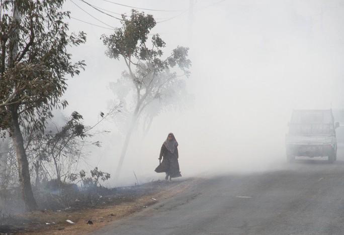 Nguy cơ Đông Nam Á ô nhiễm vì cháy rừng ở Indonesia - Ảnh 2.