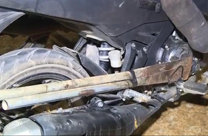 Clip, hình ảnh đường dây trộm chó hơn 100 tấn ở Thanh Hóa - Ảnh 6.