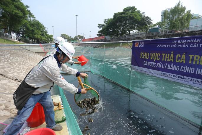 Clip: Thả 100 con cá Koi Nhật Bản xuống đoạn sông Tô Lịch làm sạch và Hồ Tây - Ảnh 6.