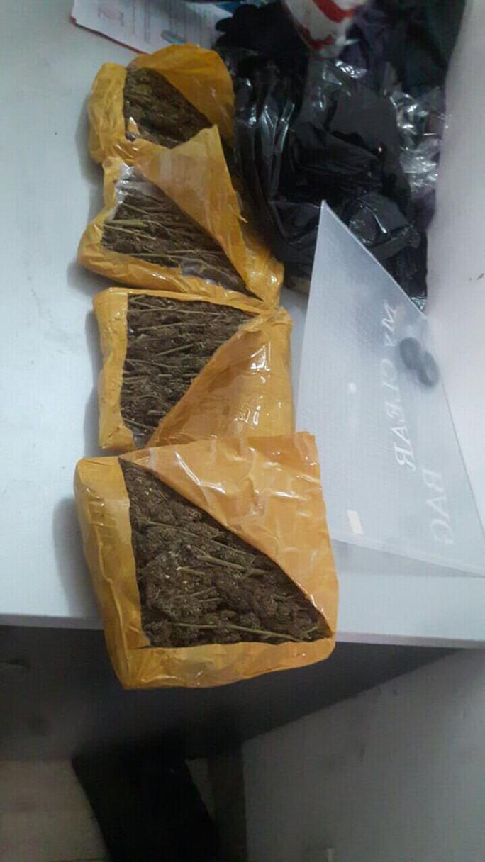 2 sinh viên mua bán gần 1,5 kg cần sa, vận chuyển bằng đường bưu điện - Ảnh 3.