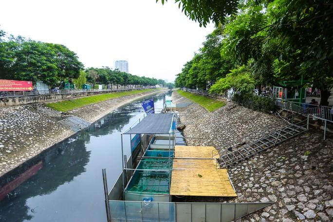 Clip: Đàn cá Koi Nhật Bản bơi chậm chạp sau 3 ngày thả xuống nước được xử lý ở sông Tô Lịch - Ảnh 7.