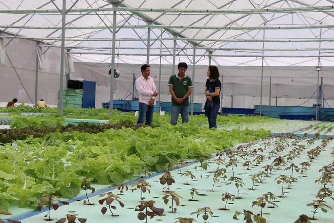 Đồng Tháp níu chân du khách bằng du lịch nông nghiệp sạch - Ảnh 2.