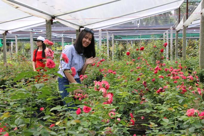 Đồng Tháp níu chân du khách bằng du lịch nông nghiệp sạch - Ảnh 3.