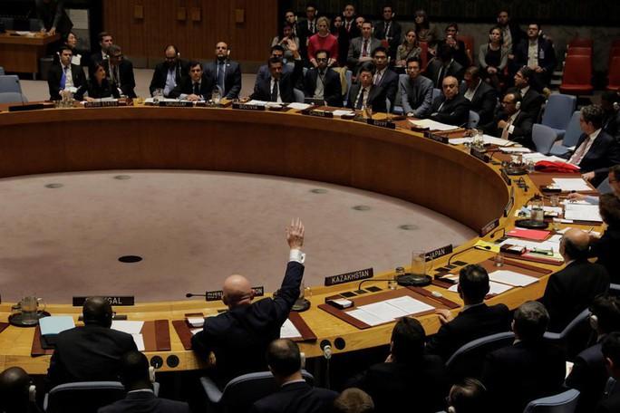 Nga và Trung Quốc lại phủ quyết dự thảo nghị quyết về Syria - Ảnh 1.