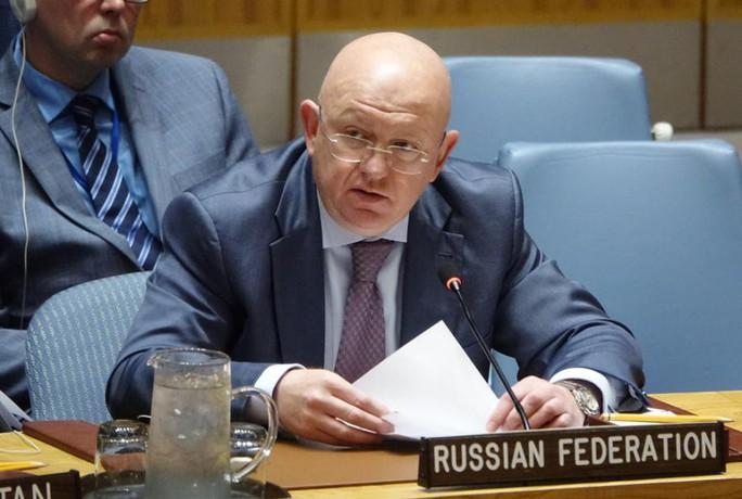 Nga và Trung Quốc lại phủ quyết dự thảo nghị quyết về Syria - Ảnh 2.