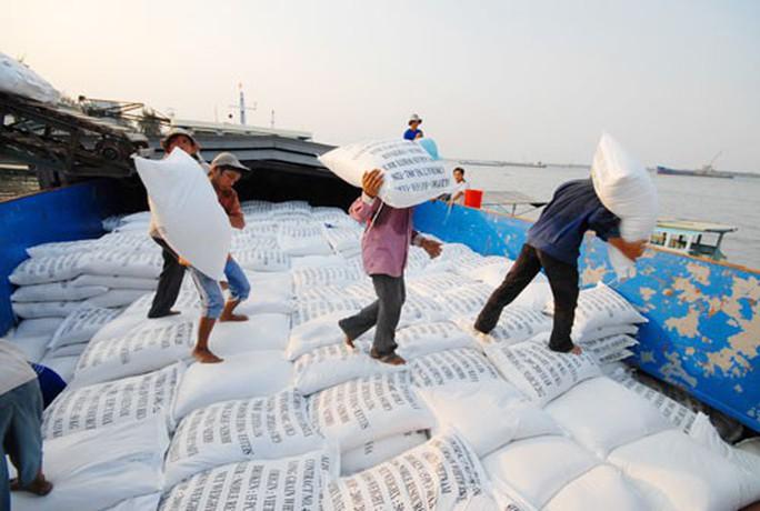 Gạo Việt Nam tìm cơ hội trong khó khăn - Ảnh 1.