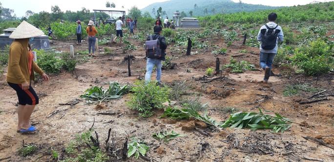 Xã ngang nhiên nhổ keo của dân: Xã muốn hỗ trợ 4.000 đồng/cây, dân đòi đền 35.000 đồng - Ảnh 5.