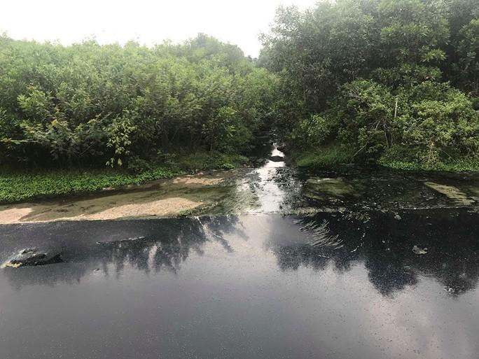 Người dân Quảng Nam bao vây nhà máy cồn vì để xảy ra sự cố tràn dầu - Ảnh 3.