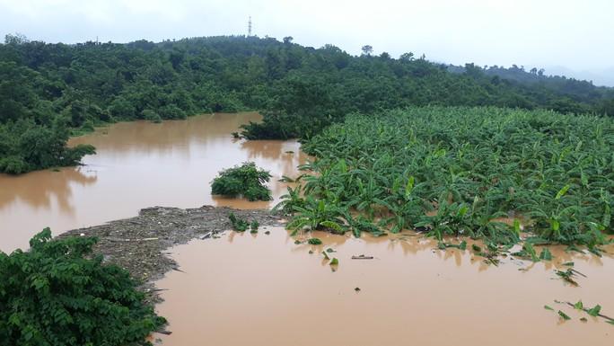 Quảng Trị: Mưa lớn khiến nhiều vùng bị nước dâng chia cắt - Ảnh 3.