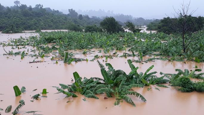 Cận cảnh hàng trăm nhà dân Quảng Trị ngập chìm trong nước - Ảnh 4.