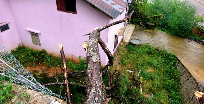 Lâm Đồng: Cây gãy đổ, ngập lụt, sạt lở đất nhà tốc mái la liệt do mưa bão - Ảnh 6.