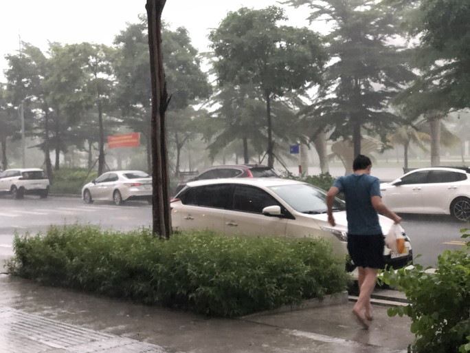 TP HCM mưa, dông lớn  - Ảnh 3.
