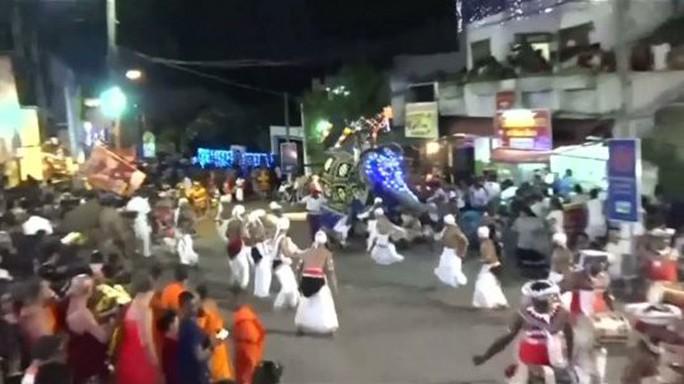 Voi bị đánh nổi điên làm 18 người bị thương Sri Lanka - Ảnh 1.