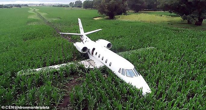 Vệt bùn dài thẳng tắp trên cánh đồng bắp vinh danh phi công tài ba - Ảnh 1.