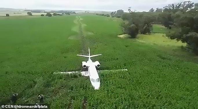 Vệt bùn dài thẳng tắp trên cánh đồng bắp vinh danh phi công tài ba - Ảnh 3.