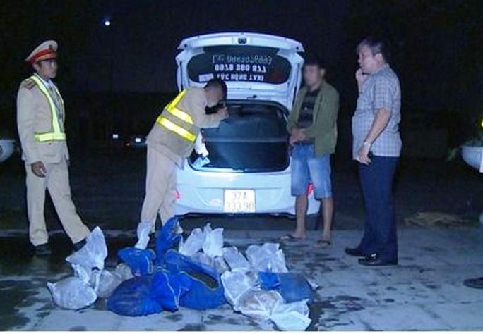 Bắt 2 đối tượng đi ôtô chở 16 cá thể tê tê ra Hà Nội tiêu thụ - Ảnh 1.